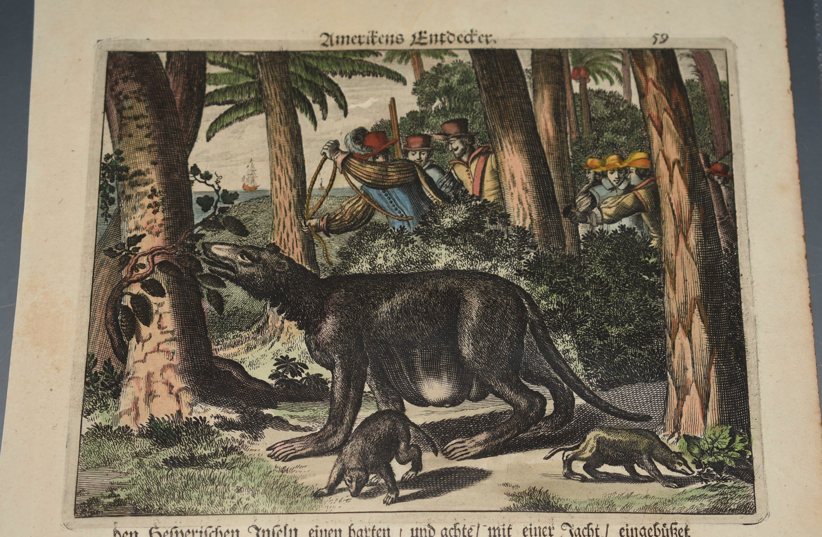 Image for Early Printing Leaf, With Hand Coloured engraving of Dutch Explorers trying to Capture Hunt Foreign Animals. From The Americas of 1673