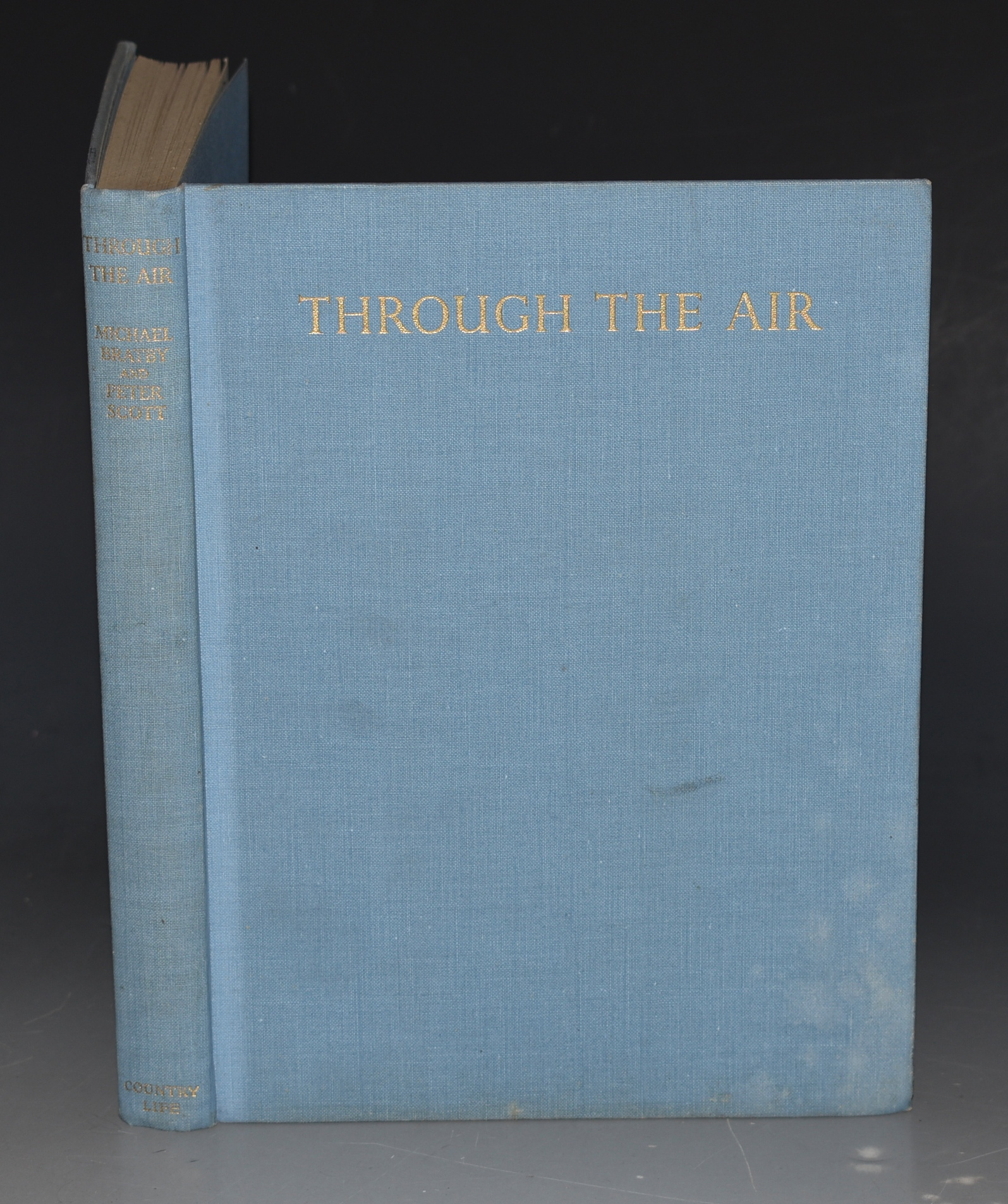 Image for Through the Air. Adventures with Wild Fowl, and Small-boat Sailing.