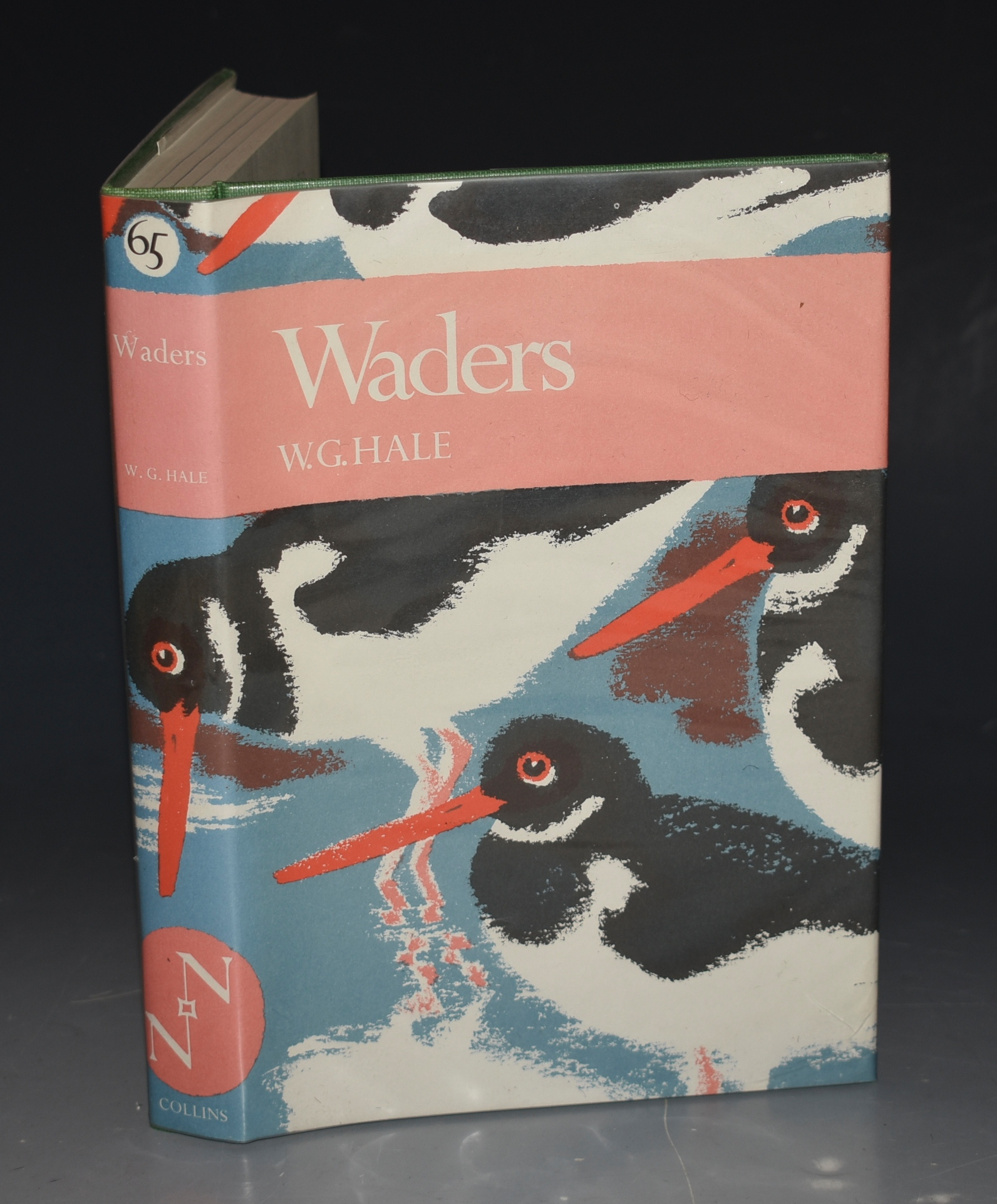 Image for Waders. (The New Naturalist 65).