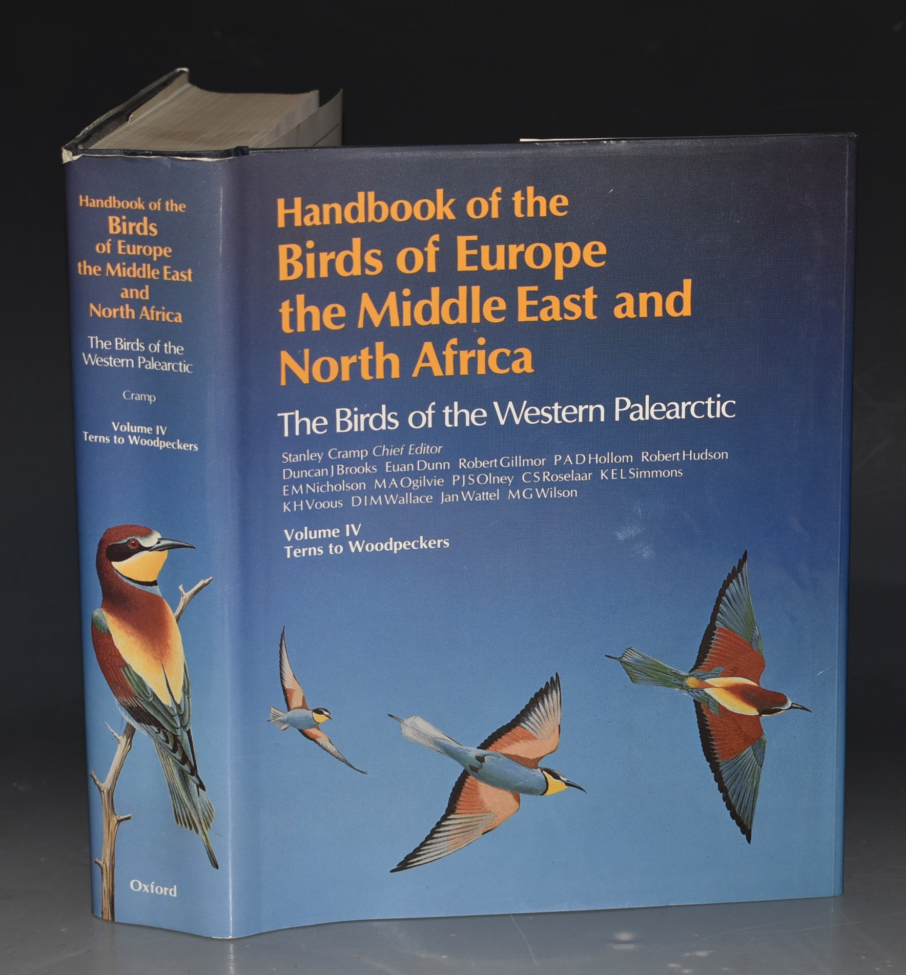 Image for Handbook of the Birds of Europe, the Middle East and North Africa: The Birds of the Western Palearctic: Volume IV (4) - Terns to Woodpeckers (complete in itself).