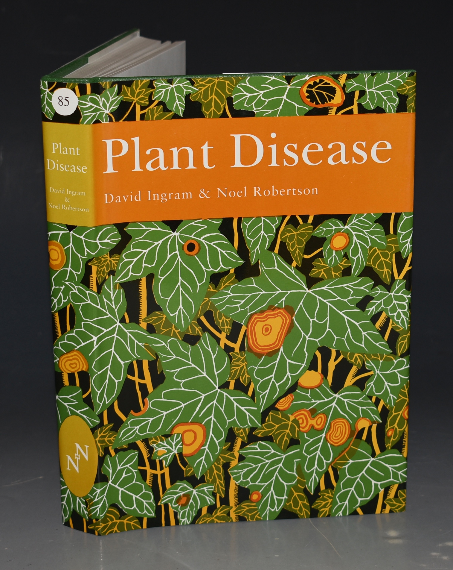 Image for Plant Disease. (The New Naturalist 85).