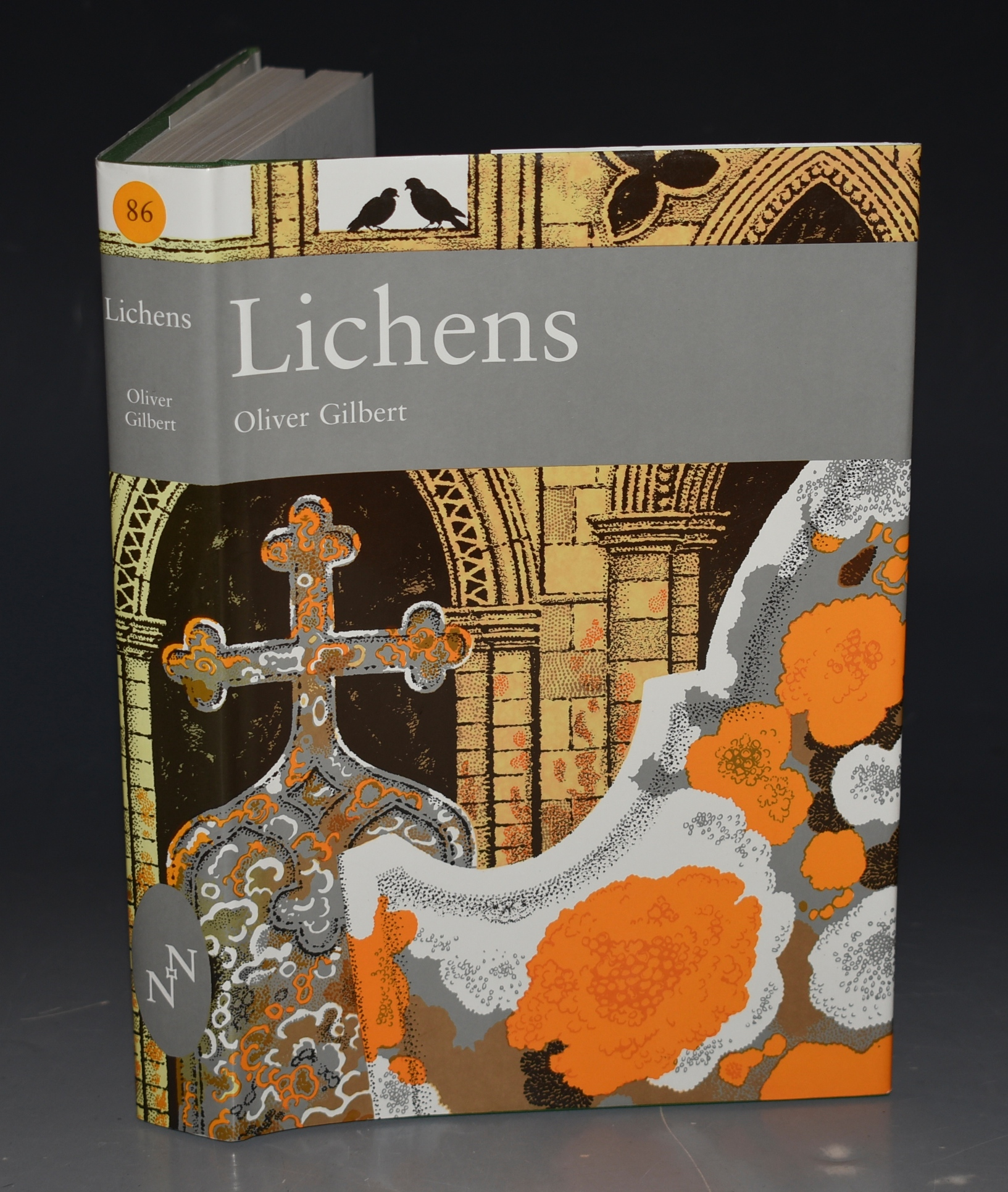 Image for Lichens (The New Naturalist 86).