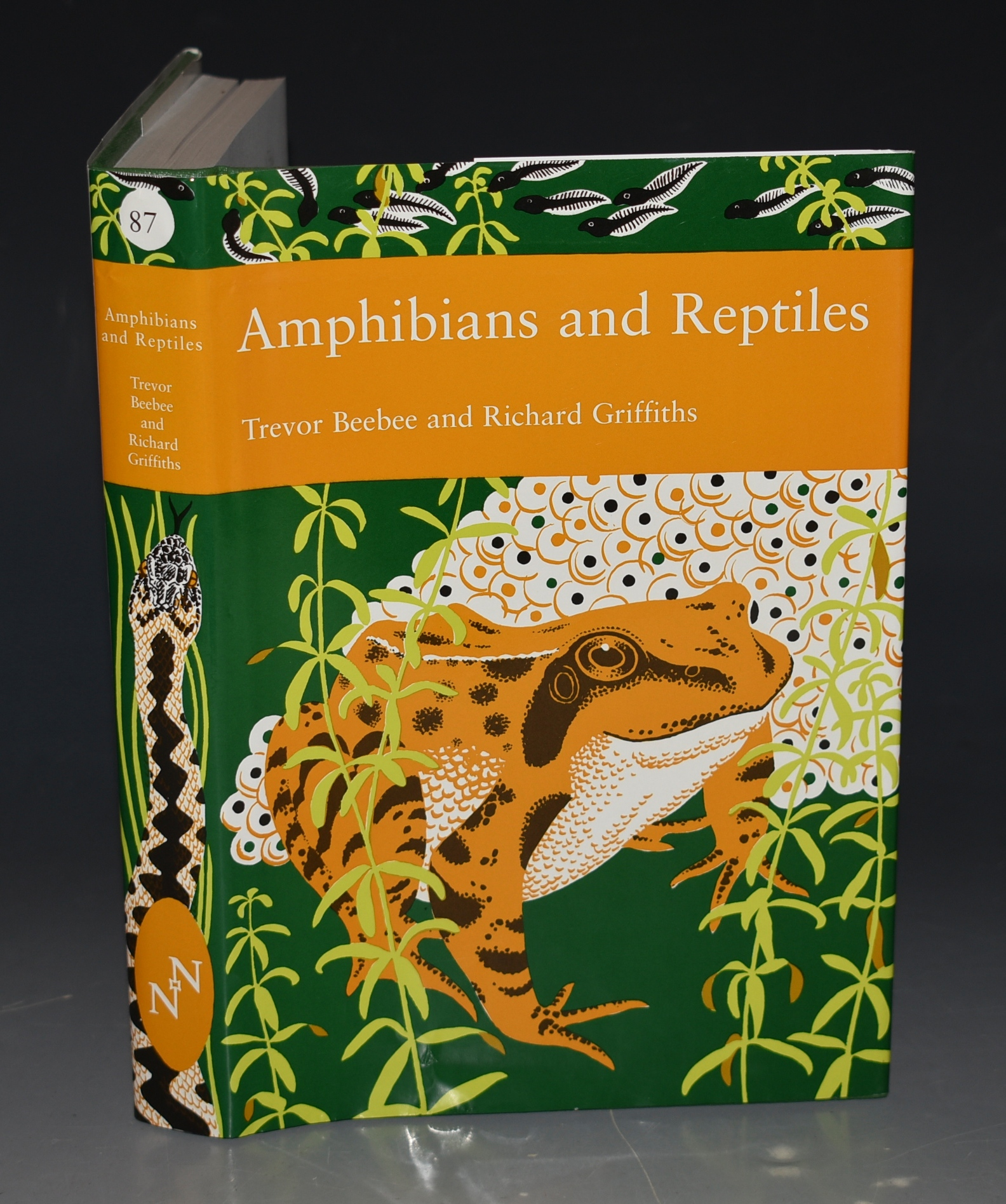 Image for Amphibians and Reptiles. (The New Naturalist 87).