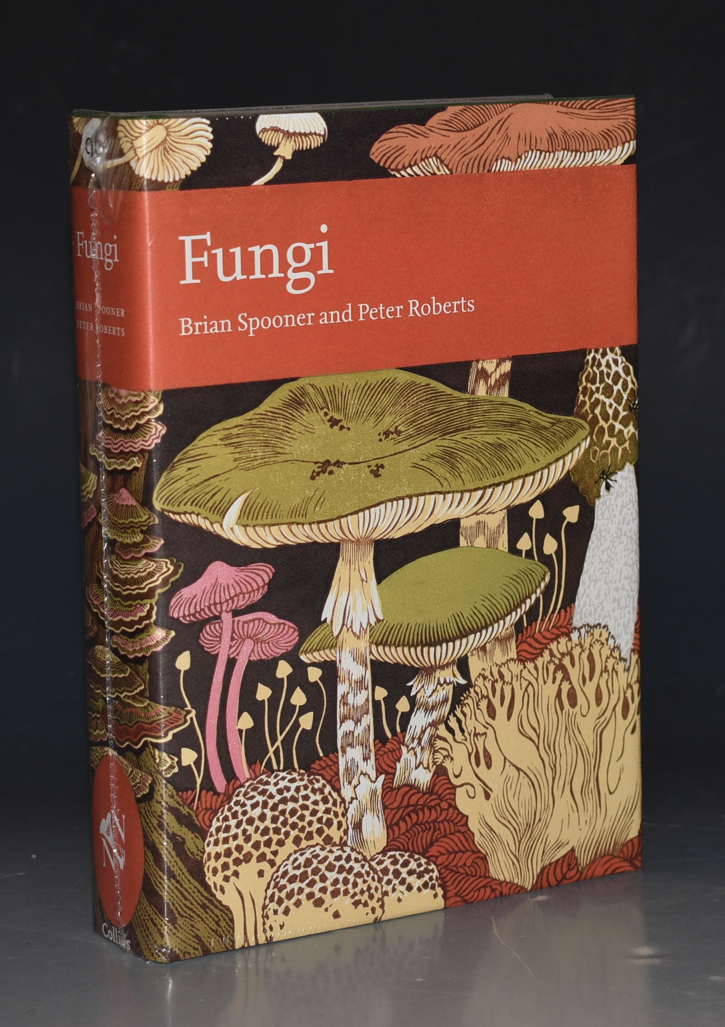 Image for Fungi. (The New Naturalist 96).