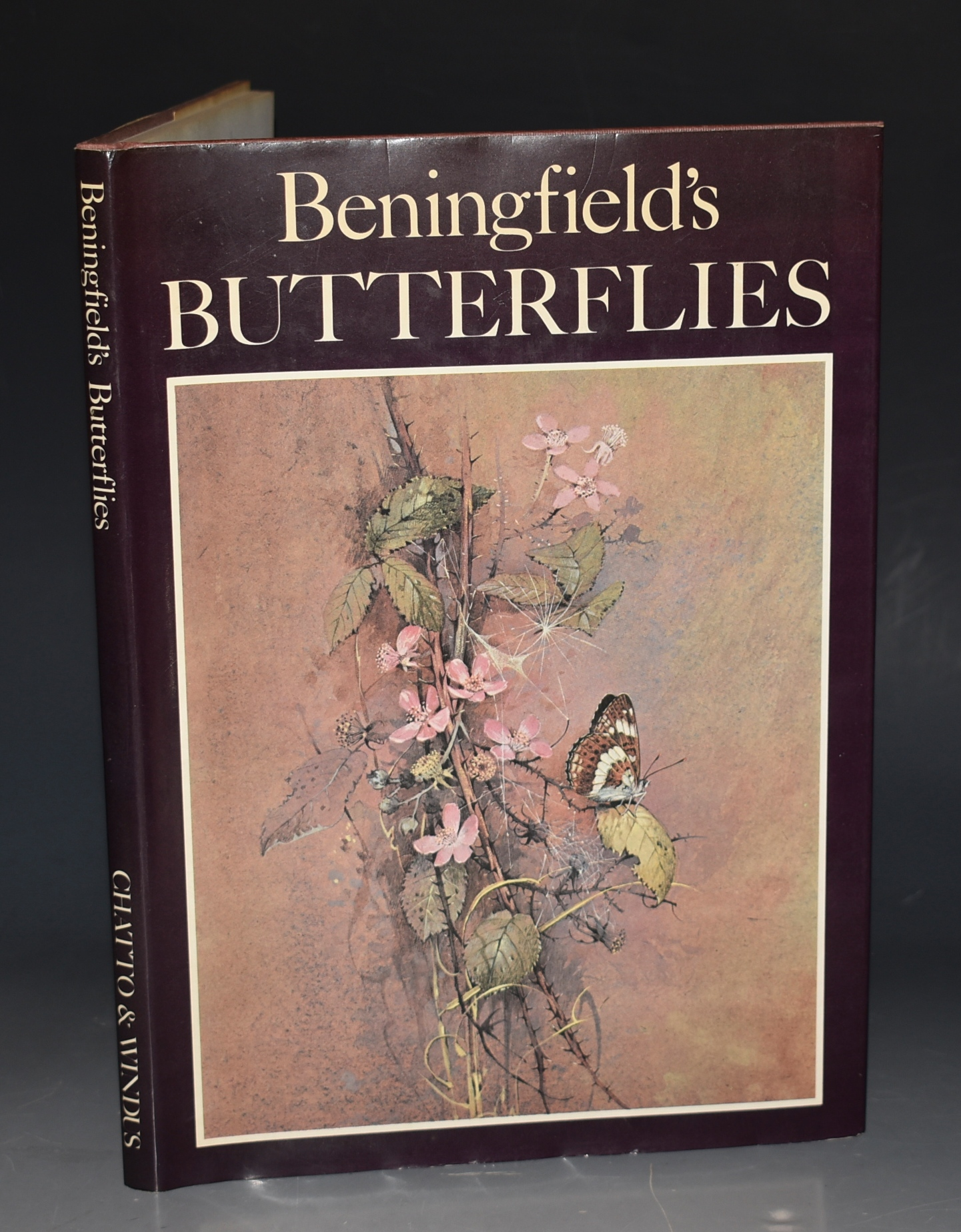 Image for Beningfield's Butterflies. Paintings and Drawings by Gordon beningfield. Text by Robert Goodden.