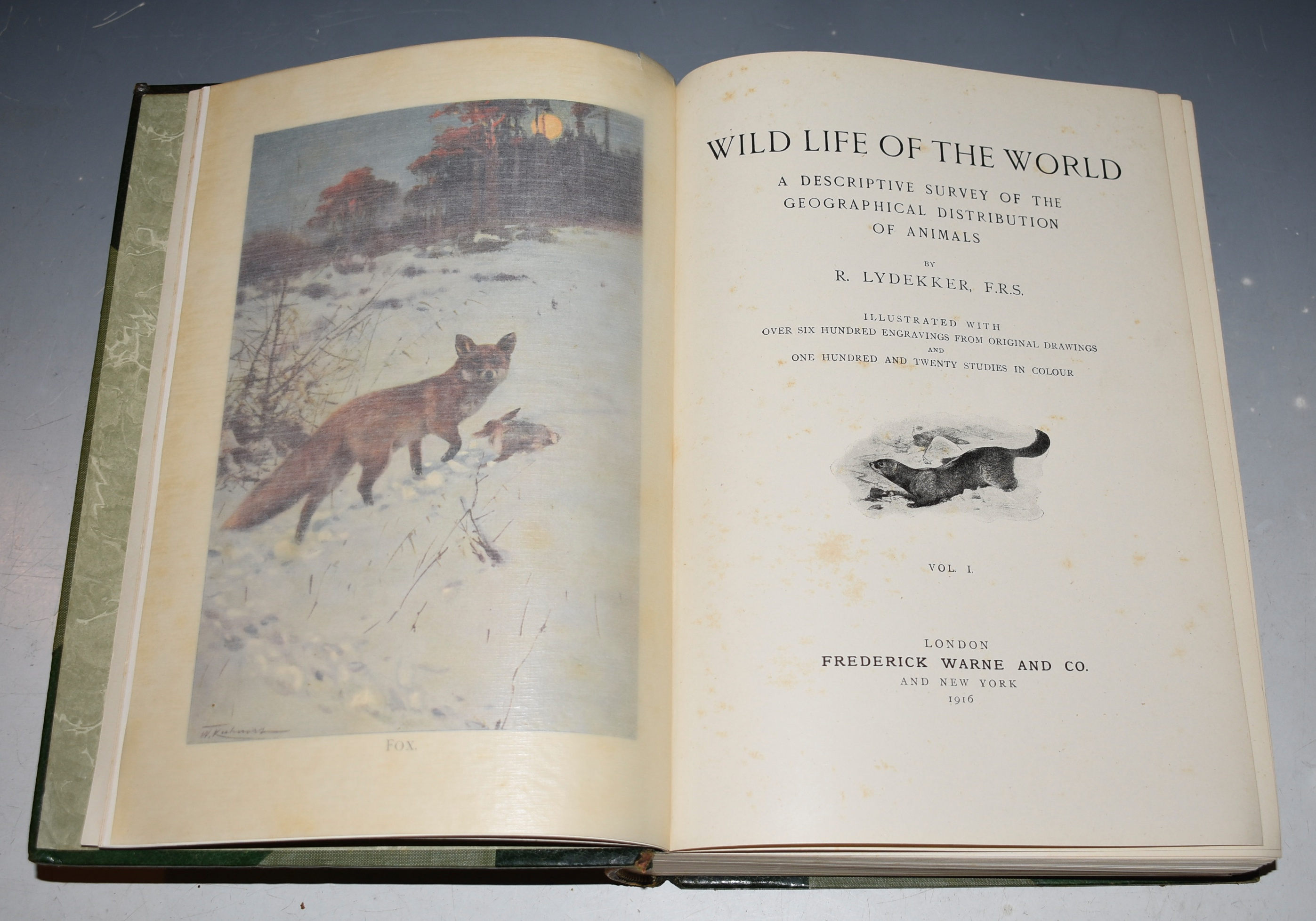 Image for Wild Life of the World. A Descriptive Survey of the Geographical Distribution of Animals. Illustrated with over six hundred engravings from original drawings and one hundred and twenty studies in colour. Three volumes.