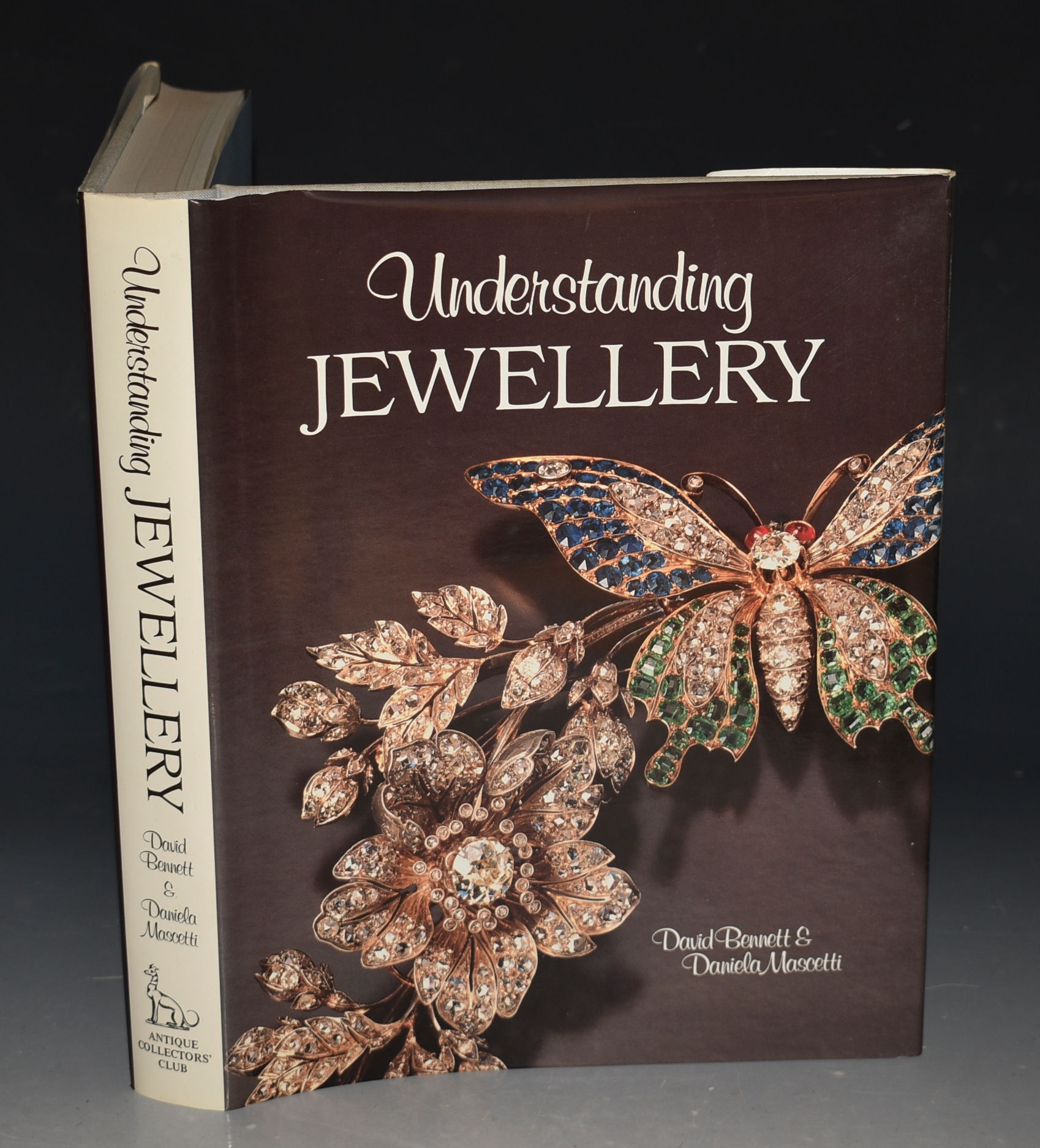 Image for Understanding Jewellery.