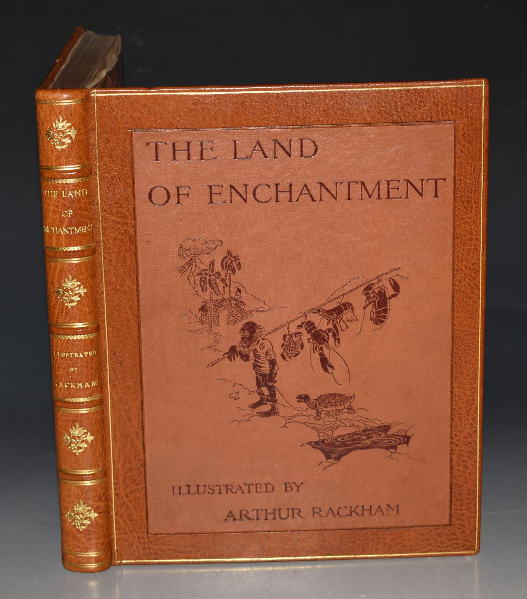 Image for The Land of Enchantment. Illustrated by Arthur Rackham.